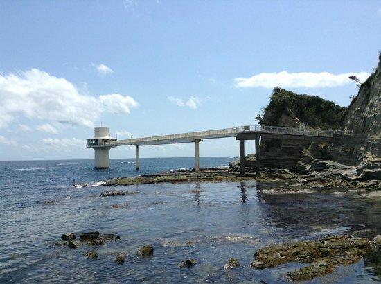 Katsuura, اليابان: 太平洋に突き出た展望塔
