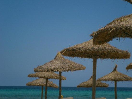 Hotel Apartamentos Plaza Son Rigo: La plage