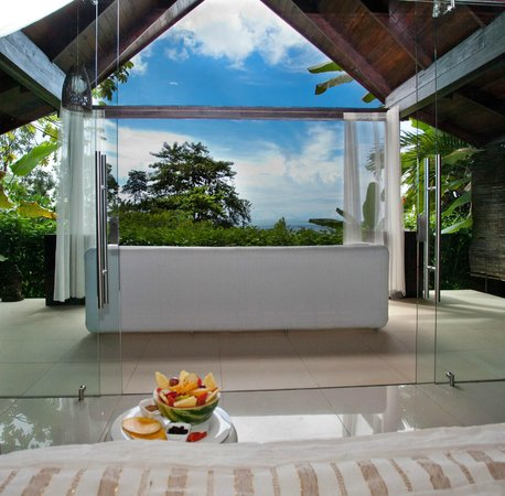 Oxygen Jungle Villas : The ocean view villa.