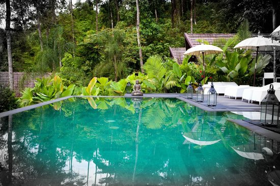 Oxygen Jungle Villas : An infinity pool in the jungle.