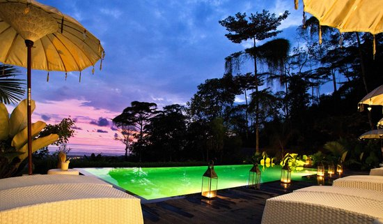 Oxygen Jungle Villas : The infinity Pool at night.