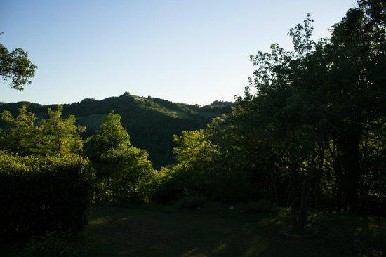 Agriturismo Ca'Andreana: vista panoramica