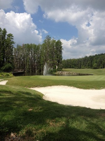 Saddlebrook Resort Tampa : Golf Course