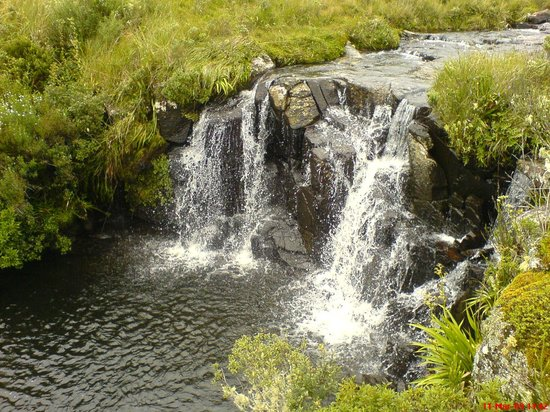 Graxaim Ecoturismo e Aventuras: Caminhada da Nascente do rio Pelotas