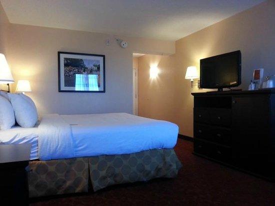 La Quinta Inn & Suites San Antonio Medical Center : King suite
