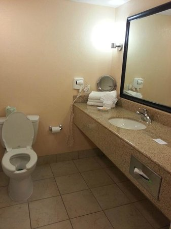 La Quinta Inn & Suites San Antonio Medical Center : bathroom