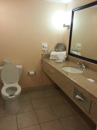 La Quinta Inn & Suites San Antonio Medical Center: Clean bathrooms always a plus!