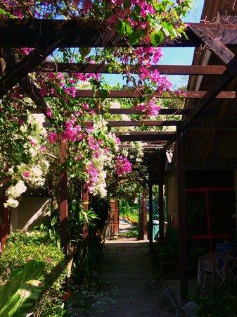Ombak Inn Resort: Ombak Inn