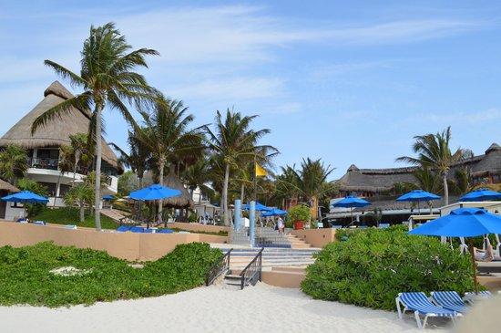 The Reef Playacar: Playa