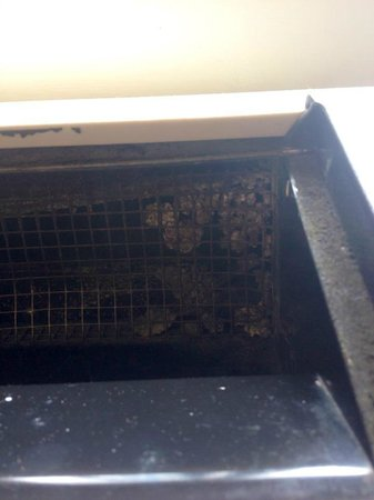 Eisenhower Hotel & Conference Center: The a/c-heating vent in our room -- unknown bug nest on the right
