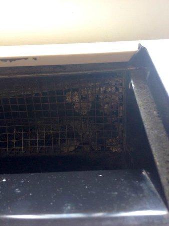 إسينهاوار هوتل آند كونفرنس سنتر: The a/c-heating vent in our room -- unknown bug nest on the right