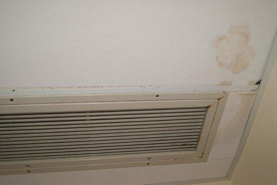 Hotel Mediterraneo : pannelli del soffitto con macchie di umidità