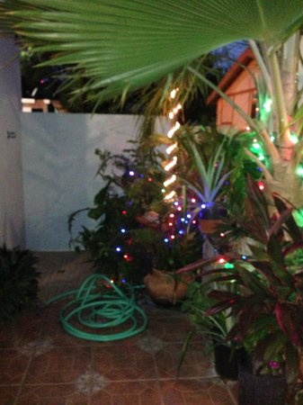 Palmetto Guesthouse: Outside rinsing area with beautiful lights