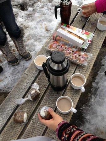 Yellowknife Polar Suite Guest Room: キャメロン滝にてピクニック