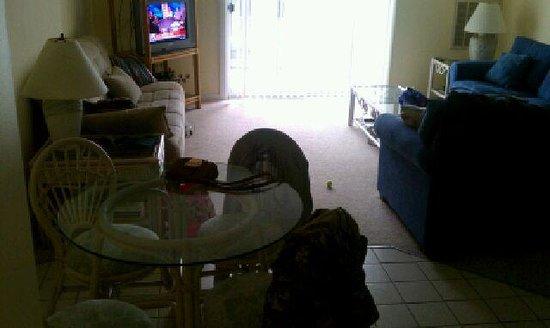 Marylander Hotel Condo: living room #203