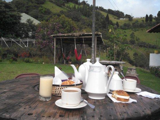Hosteria Las Orquideas: Need I say more..
