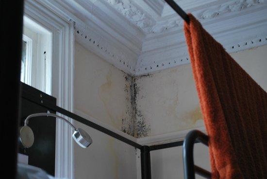 London Eye Hostel: Moisissures 1