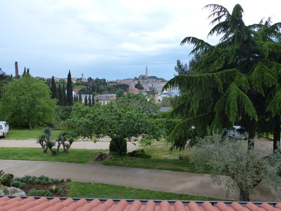 Villa Dobravac: View from the window