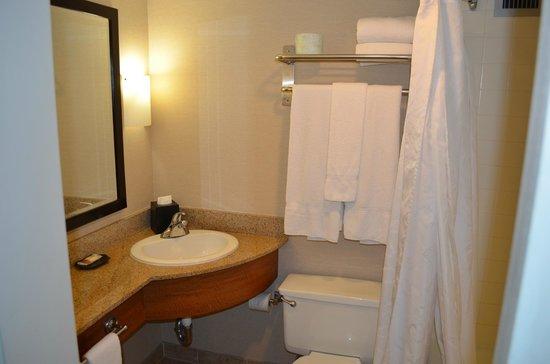 Sheraton Atlanta Hotel: Tiny and old bathroom
