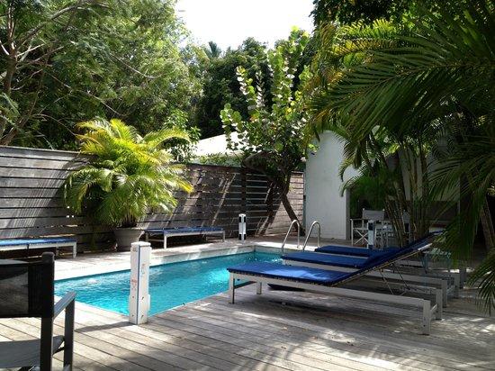 Normandie Hotel : l'espace piscine,solarium tropical et petit déjeuner