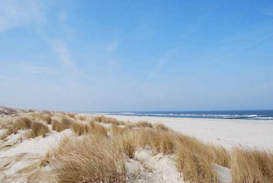 Campagne sur Mer B&B : 5 km from the beach