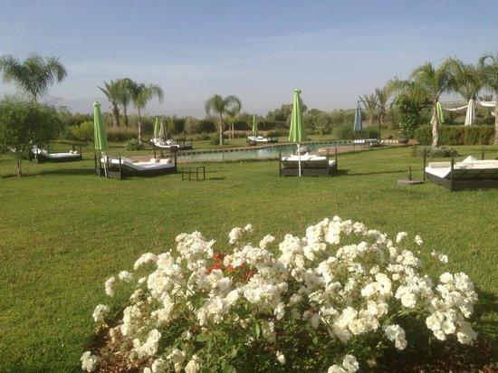 Riad Al Mendili Kasbah: vue de la piscine dans les jardins