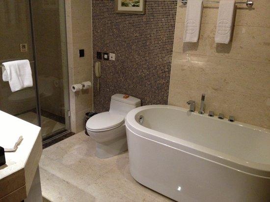 Intercity Hotel: bathroom view