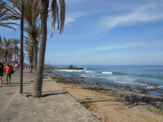 Plage picture of h10 conquistador playa de las americas - The conquistador tenerife ...