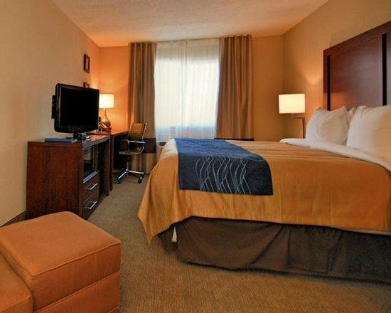 Comfort Inn Albuquerque Airport: King Room