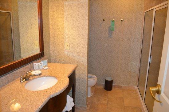 Hampton Inn & Suites Savannah Historic District: Bathroom