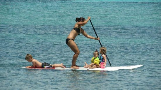 Old Bahama Bay: Paddle Boards