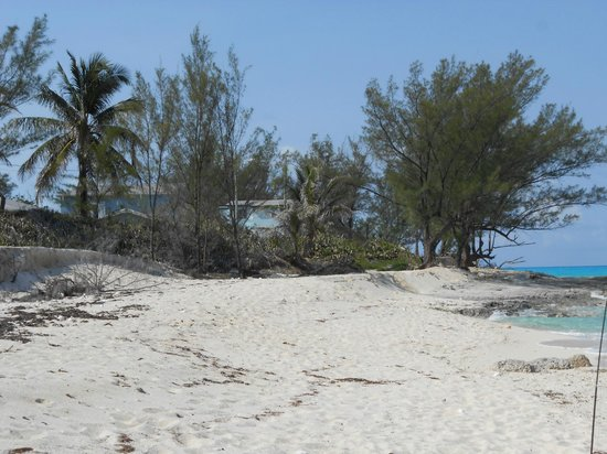 Bimini Ocean Villas: just on the beach