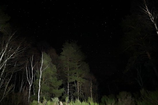 Tullochwood Lodges: Starlit sky in Tullochwood