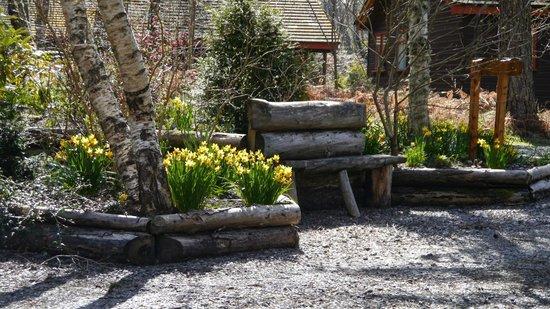 Tullochwood Lodges: Spring Tullochwood grounds