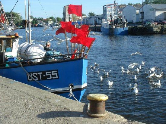 Rejs: Ustka Hafen