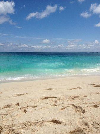 Hotel Riu Palace Paradise Island: The beach