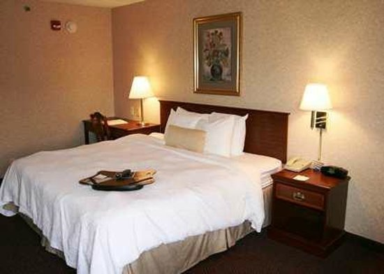 Hampton Inn Flemington: King Guest Room