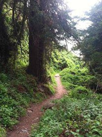 Kirk Creek Campground: Trail to private beach