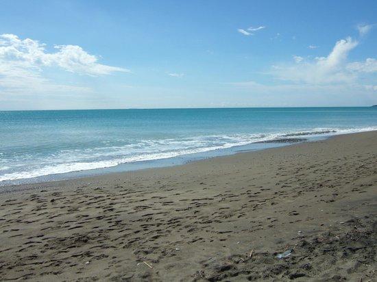 Podere Gli Olmi : spiaggia vicina (5 minuti in auto)