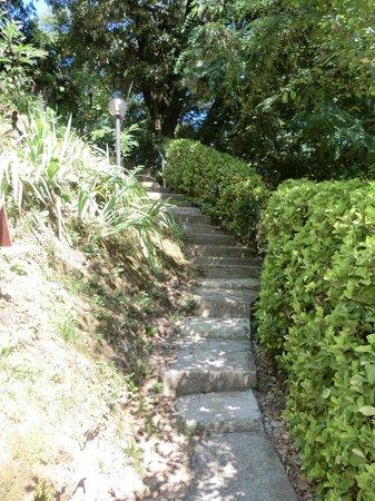 B&B Le Ghiande: affascinante scalinata