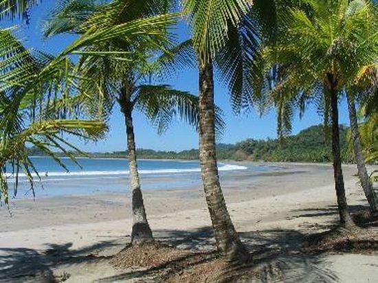 Hotel Guanamar: Playa Carrillo muy linda y limpia