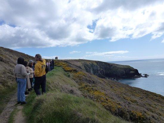 Ardmore Adventures: Cliff Walk Ardmore, Ireland