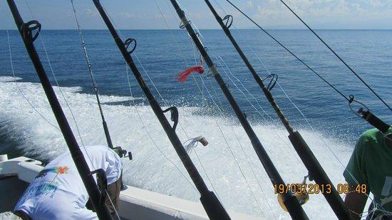 Las Islas Lodge : La pêche en mer