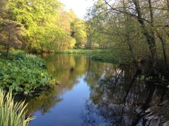 Stonyford Cottage Gardens & Nursery (Northwich) - 2020 All ...