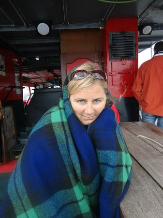 Seafari Cruises: Mid summer and it was freezing!  Luckily they supply heaps of blankets!