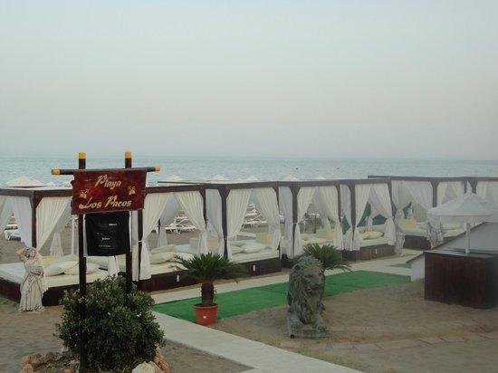 Playa La Carihuela: Luxury beach beds for hire anyone?