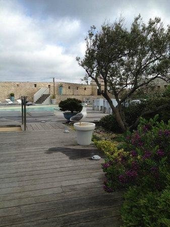 Hotel Genovese: La piscine de l'hôtel vue de la salle à manger, avec une mouette visiteuse