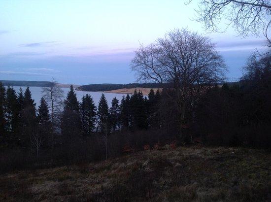 Kielder Waterside: View