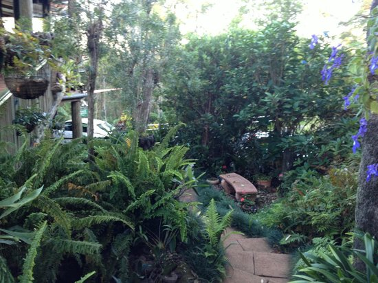 Tamborine Mountain Bed & Breakfast: Gardens surrounding rooms