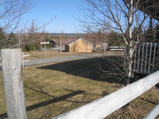 Mira River Cottages : Motel-Zimmer
